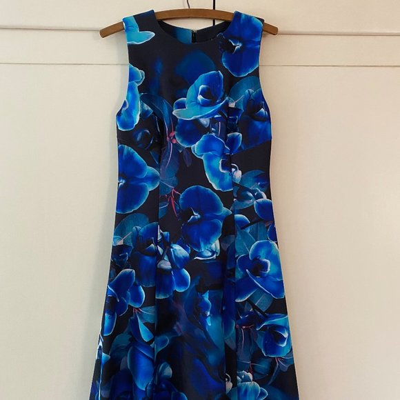 Sleeveless Blue Dress with Bold Floral Print